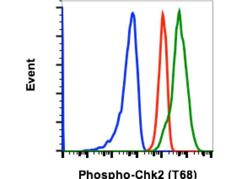 Flow Cytometry (FACS) image for anti-Checkpoint Kinase 2 (CHEK2) (pThr68) antibody (ABIN5624414)
