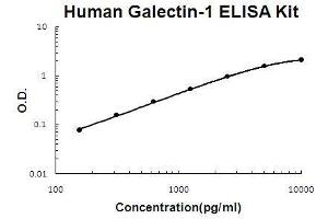 Image no. 1 for Lectin, Galactoside-Binding, Soluble, 1 (LGALS1) ELISA Kit (ABIN5510585)