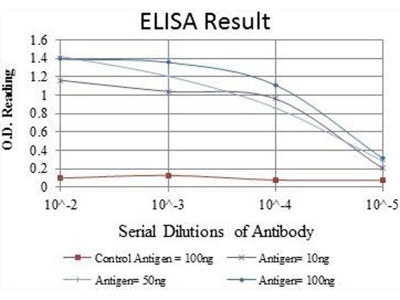 ELISA image for anti-Interleukin-1 Receptor-Associated Kinase 4 (IRAK4) antibody (ABIN1107881)