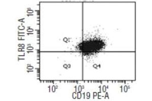 Flow Cytometry (FACS) image for anti-Toll-Like Receptor 8 (TLR8) antibody (Alexa Fluor 488) (ABIN786834)