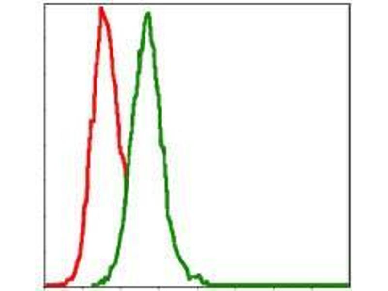 Flow Cytometry (FACS) image for anti-Mitogen-Activated Protein Kinase Kinase 7 (MAP2K7) antibody (ABIN969271)