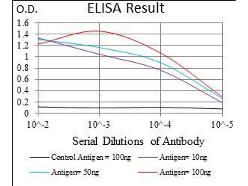 ELISA image for anti-Epsin 1 (EPN1) (AA 106-254) antibody (ABIN5542479)