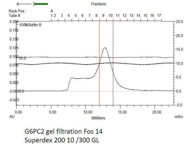 Size-exclusion chromatography-High Pressure Liquid Chromatography (SEC-HPLC) image for Glucose-6-Phosphatase, Catalytic, 2 (G6PC2) (AA 1-355) protein (rho-1D4 tag) (ABIN3080375)