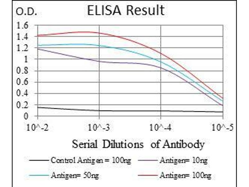 ELISA image for anti-FOXO1 antibody (Forkhead Box O1) (ABIN969521)