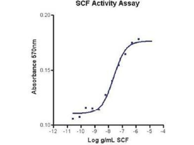 Image no. 1 for KIT Ligand (KITLG) (Active) protein (ABIN1525806)