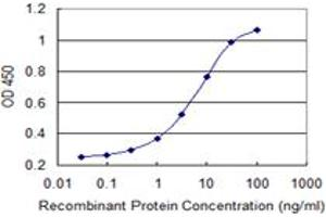 Image no. 1 for anti-Mediator Complex Subunit 9 (MED9) (AA 1-146) antibody (ABIN949411)