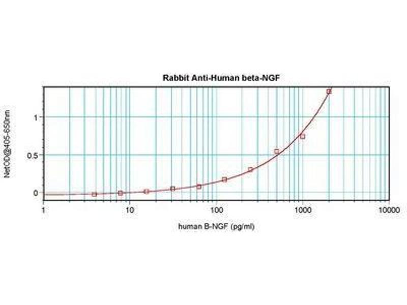 image for anti-Nerve Growth Factor beta (NGFB) antibody (ABIN465644)