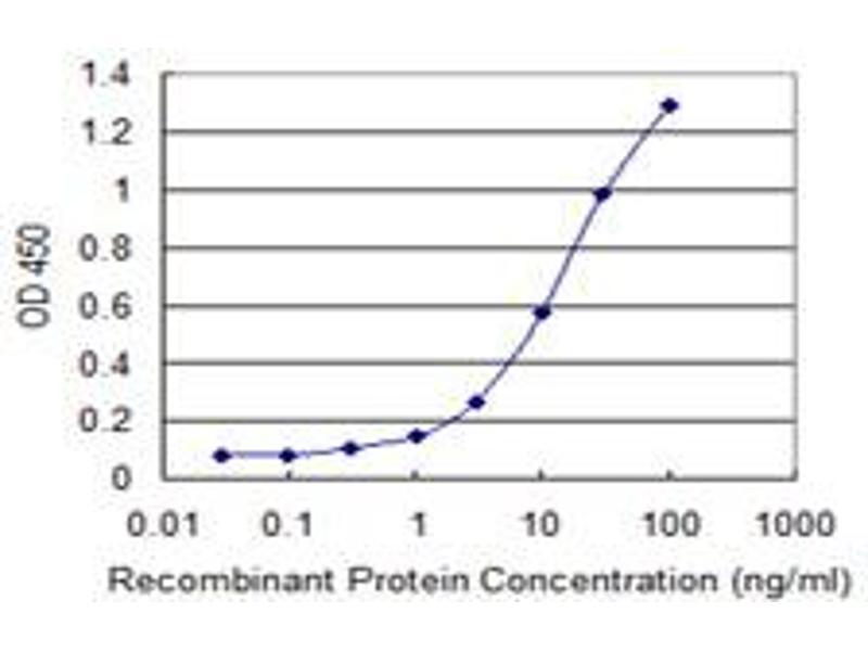 ELISA image for anti-RuvB-Like 2 (E. Coli) (RUVBL2) (AA 1-463), (full length) antibody (ABIN524255)