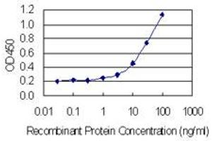 Image no. 2 for anti-Inhibitor of Growth Family, Member 4 (ING4) (AA 1-249) antibody (ABIN949289)
