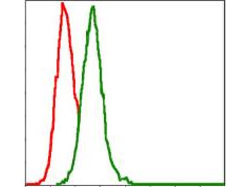 Flow Cytometry (FACS) image for anti-Mitogen-Activated Protein Kinase Kinase 7 (MAP2K7) antibody (ABIN1108128)