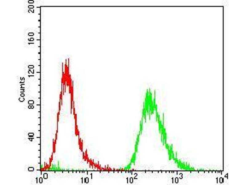 Flow Cytometry (FACS) image for anti-Epsin 1 (EPN1) (AA 106-254) antibody (ABIN5542479)