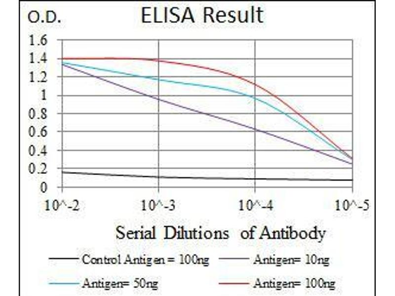 ELISA image for anti-Transforming Growth Factor, beta 1 (TGFB1) (AA 62-195) antibody (ABIN969570)