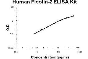 ELISA image for Ficolin (Collagen/fibrinogen Domain Containing Lectin) 2 (Hucolin) (FCN2) ELISA Kit (ABIN1889409)