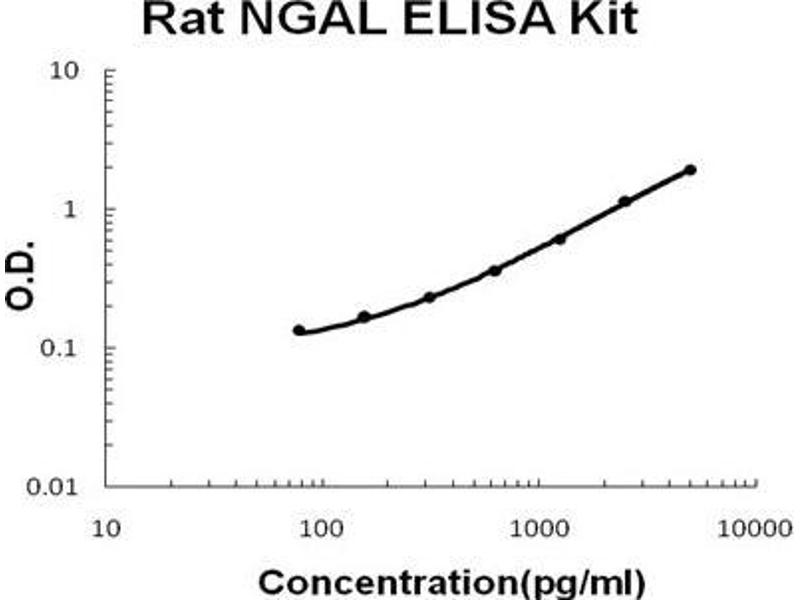 Lipocalin 2 (LCN2) ELISA Kit