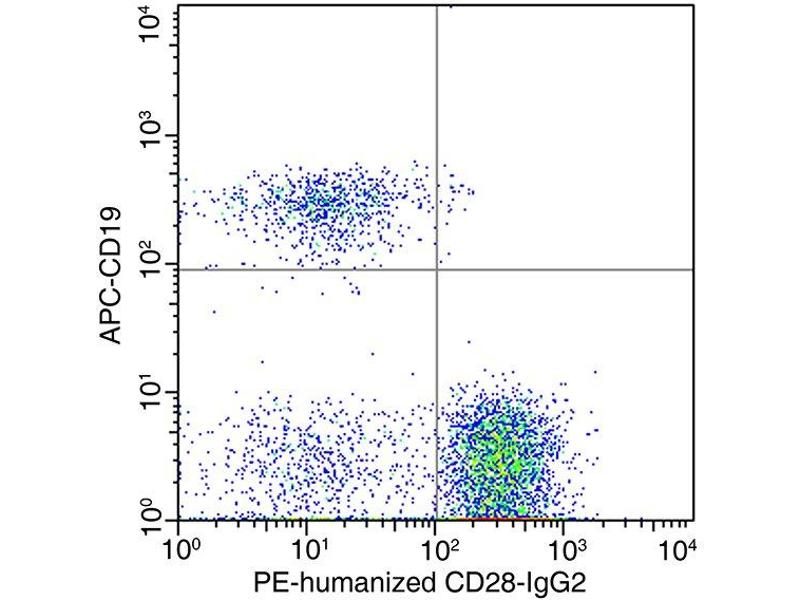Flow Cytometry (FACS) image for anti-CD28 (CD28) antibody (ABIN5506227)