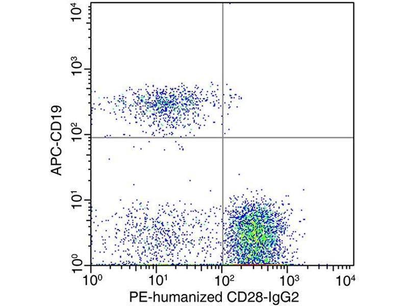 Flow Cytometry (FACS) image for anti-CD28 antibody (CD28) (ABIN5506227)