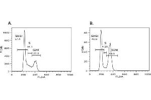 Image no. 1 for EZCellTM Cell Cycle Analysis Kit (ABIN2487156)