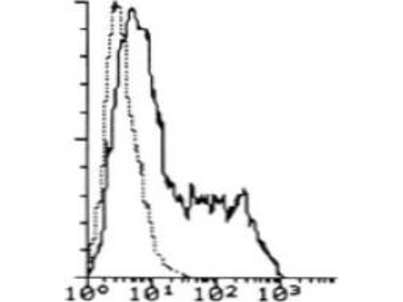 Flow Cytometry (FACS) image for anti-Interleukin 7 Receptor (IL7R) antibody (ABIN786861)