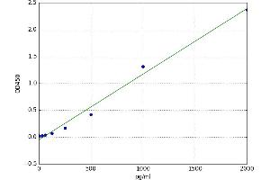 Image no. 1 for Connective Tissue Growth Factor (CTGF) ELISA Kit (ABIN5520369)