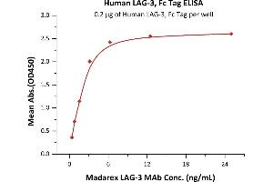 Image no. 1 for Lymphocyte-Activation Gene 3 (LAG3) (AA 23-450) (Active) protein (Fc Tag) (ABIN5526624)
