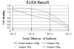 ELISA image for anti-CREB1 antibody (CAMP Responsive Element Binding Protein 1) (ABIN969061)