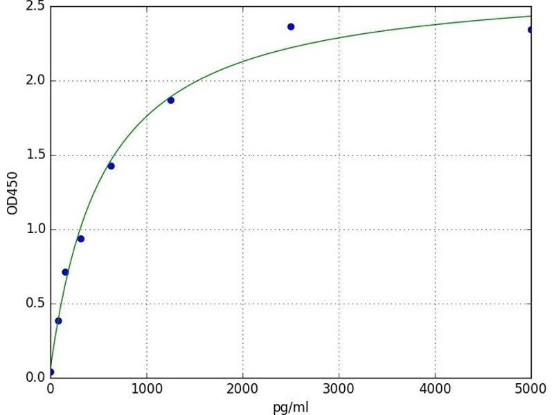 Sp1 Transcription Factor (SP1) ELISA Kit