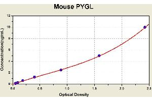 Image no. 2 for phosphorylase, Glycogen, Liver (PYGL) ELISA Kit (ABIN1115200)