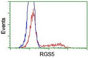 Image no. 2 for anti-Regulator of G-Protein Signaling 5 (RGS5) (AA 1-181) antibody (ABIN1490600)