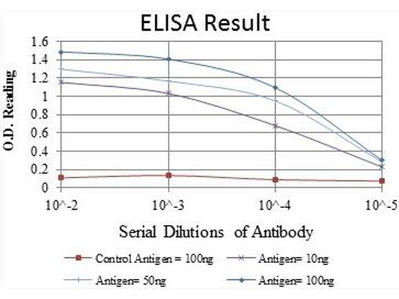 ELISA image for anti-FYN antibody (FYN Oncogene Related To SRC, FGR, YES) (ABIN1107284)