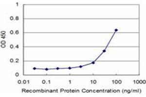 Image no. 2 for anti-Poly(rC) Binding Protein 2 (PCBP2) (AA 1-362) antibody (ABIN518658)