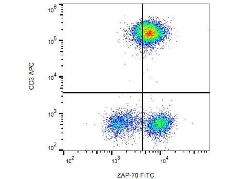 Flow Cytometry (FACS) image for anti-zeta-Chain (TCR) Associated Protein Kinase 70kDa (ZAP70) antibody (ABIN4366555)