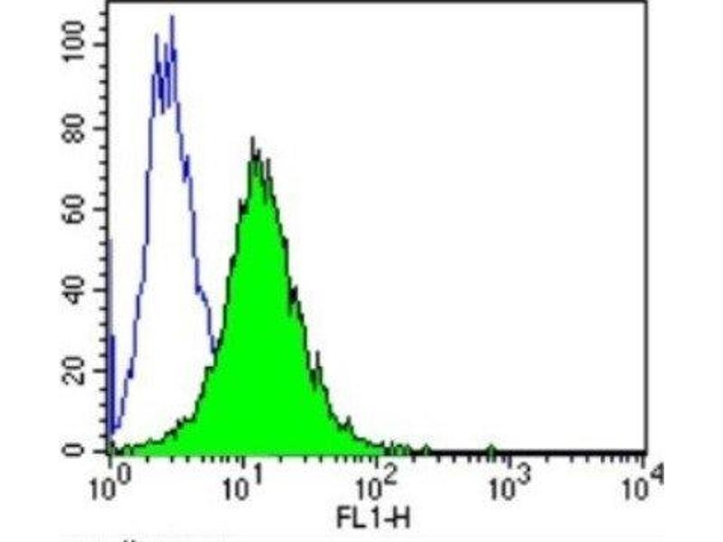 Flow Cytometry (FACS) image for anti-Aryl Hydrocarbon Receptor (AHR) antibody (ABIN152674)