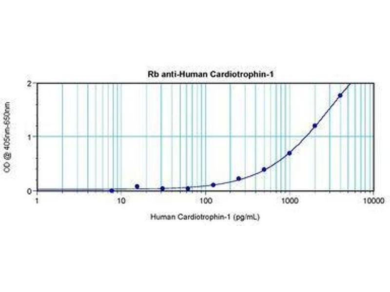 image for anti-Cardiotrophin 1 antibody (CTF1) (ABIN465486)