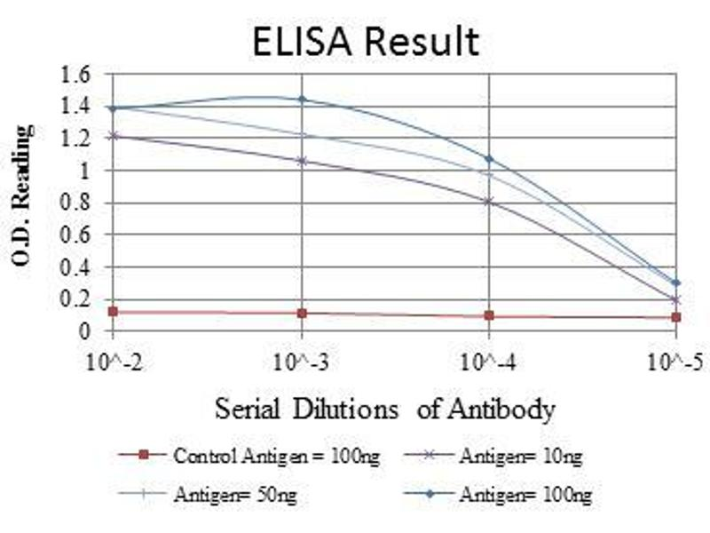 ELISA image for anti-CDK9 antibody (Cyclin-Dependent Kinase 9) (ABIN969042)