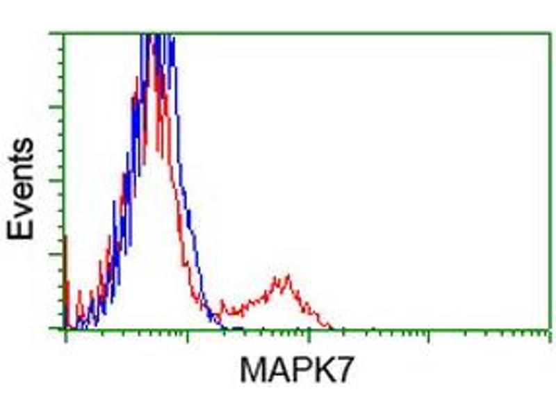 Flow Cytometry (FACS) image for anti-Mitogen-Activated Protein Kinase 7 (MAPK7) antibody (ABIN2453998)