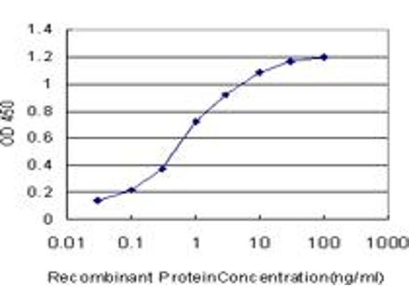 Image no. 4 for anti-Forkhead Box O3 (FOXO3) (AA 361-460) antibody (ABIN515728)