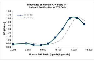Image no. 2 for Fibroblast Growth Factor 2 (Basic) (FGF2) protein (ABIN6700913)