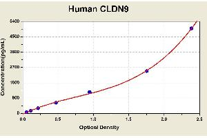 Image no. 1 for Claudin 9 (CLDN9) ELISA Kit (ABIN1114169)