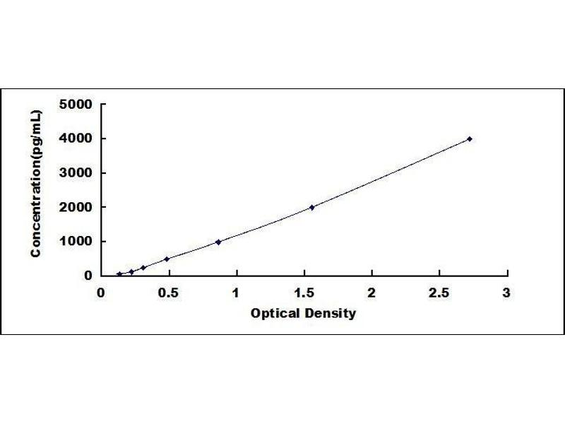 Methylenetetrahydrofolate Reductase (NAD(P)H) (MTHFR) ELISA Kit