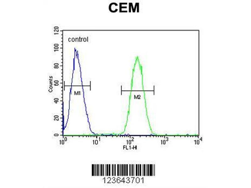 Flow Cytometry (FACS) image for anti-WASL antibody (Wiskott-Aldrich Syndrome-Like) (AA 116-144) (ABIN653830)