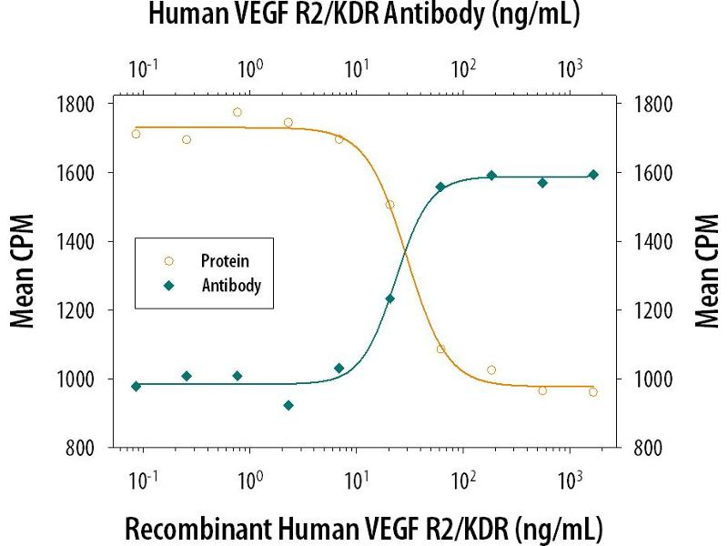 Neutralization (Neut) image for anti-VEGFR2 antibody (Kinase insert Domain Receptor (A Type III Receptor tyrosine Kinase)) (AA 20-764) (ABIN4899538)