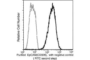 Image no. 3 for anti-Epithelial Cell Adhesion Molecule (EPCAM) (AA 1-265) antibody (ABIN1997259)