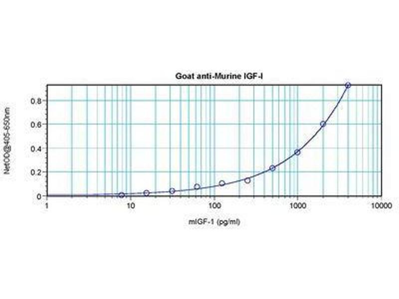 image for anti-Insulin-Like Growth Factor 1 (IGF1) antibody (ABIN464964)