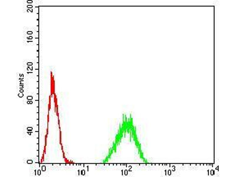 Flow Cytometry (FACS) image for anti-Paired Box 6 (PAX6) (AA 1-122) antibody (ABIN4880927)