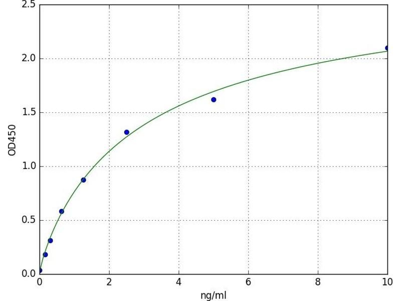 Interferon Regulatory Factor 8 (IRF8) ELISA Kit