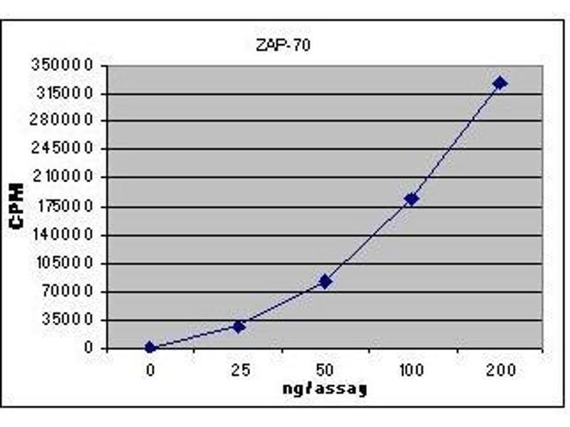 Activity Assay (AcA) image for zeta-Chain (TCR) Associated Protein Kinase 70kDa (ZAP70) (Active) protein (ABIN411959)