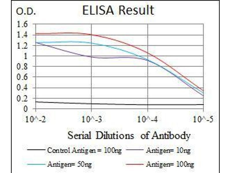 ELISA image for anti-FOXP1 antibody (Forkhead Box P1) (AA 481-677) (ABIN1098120)