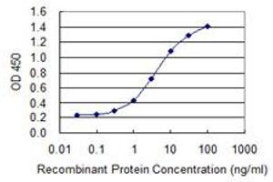 Image no. 1 for anti-Zinc Finger Protein 287 (ZNF287) (AA 231-330) antibody (ABIN528152)