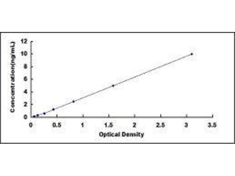 Oncostatin M Receptor (OSMR) ELISA Kit