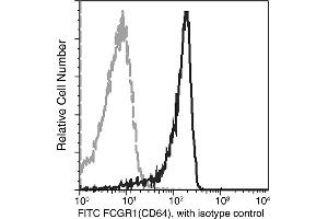 Image no. 1 for anti-Fc Receptor, IgG, High Affinity I (FCGR1) (AA 1-285) antibody (FITC) (ABIN6924900)